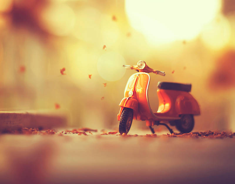 Image result for autumn on Vespa