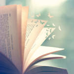 Flying Stories by arefin03