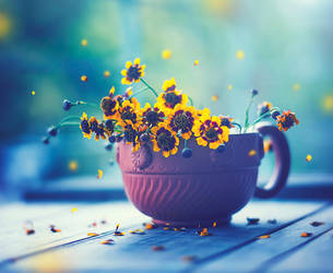 Happy Everyday by arefin03