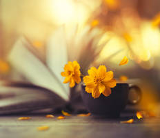 Midas touch by arefin03