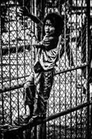 children of mae sai II by reirainx