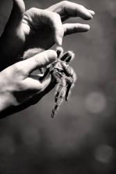 Arachnophobia by prettyfreakjesper