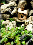 Fairy Garden by Wilhelmine