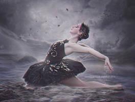 Black Swan by Amiltarea