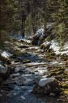 Upstream by sztoli