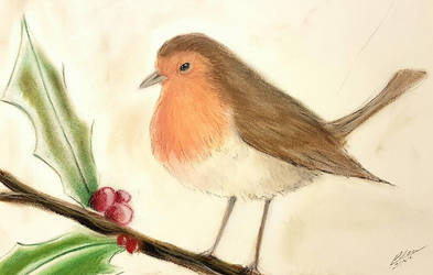 A robin by Plishman