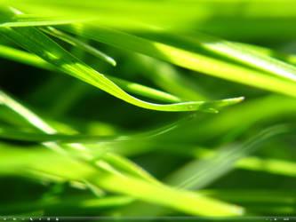 Windows 7 - March 7th. by killermole23