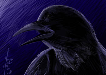 Commission-Quoth the Raven by GenkiGoth