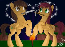 Ponycraft Couple by AllyCatBlu