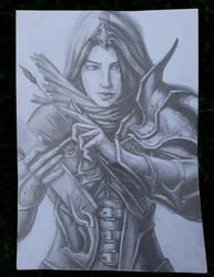 Demon Hunter( Diablo 3 ) by Colorstormu
