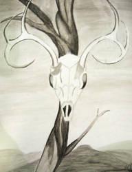 Deer Skull by dreamsforcali