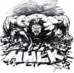 hulk sketch by ayk66