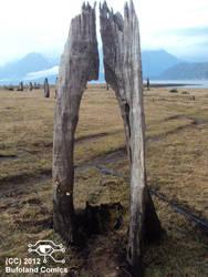 Lago Chapo by Bufoland