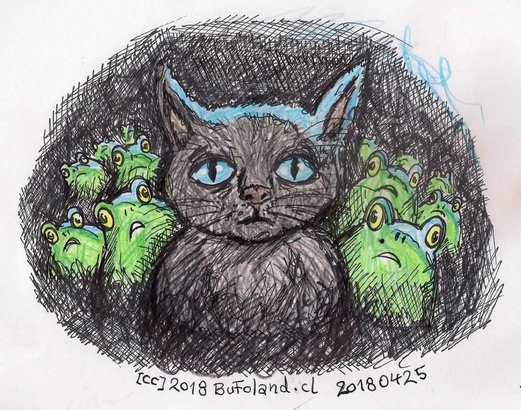 El Elegido (Gato y Ranas) by Bufoland
