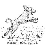 Perrito 20180831 by Bufoland
