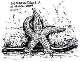 Star - Estrella by Bufoland