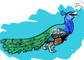 Peacock raptor by saeto15