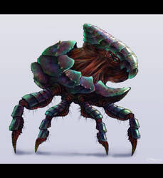 Creature Design by mf-jeff