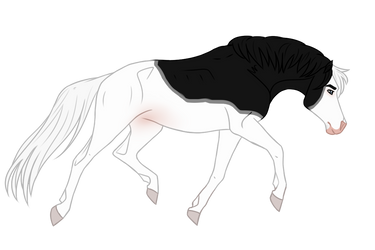 Horse Adopt 301 - Open by Miss-Adopts