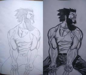 Wolverine work in progress/work done by Remarkvc