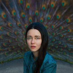 peacock eye by ankazhuravleva
