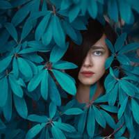 blue jungle by ankazhuravleva