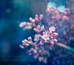 Little Crowns by Phatpuppyart-Studios