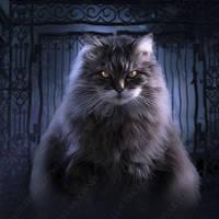 Phatcat by Phatpuppyart-Studios