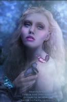 Princess Wonderland by Phatpuppyart-Studios
