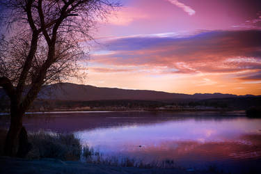 Sunrise at Lake Riverside by Phatpuppyart-Studios
