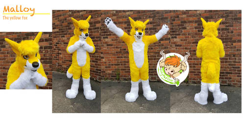 Malloy the Yellow fox (commission) by ArtyMadCow