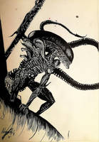 Alien by Khov97