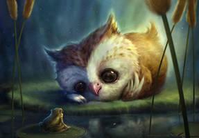 Owlie by Shreya
