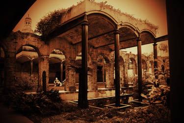 Garden In Sepia by davox1