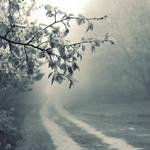 foggy road by leenik