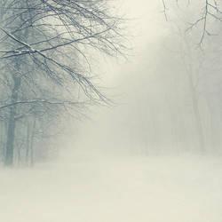 White noise by leenik