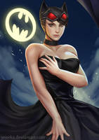 Catwoman by ynorka
