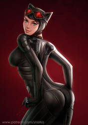 Catwoman's back by ynorka