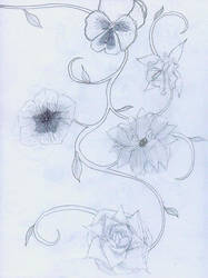 Flowers - Sketches by HollysHobbies