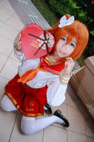 Love Live! - Valentine Kousaka Honoka by Xeno-Photography