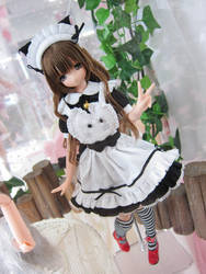 Dollfie - Meido by Xeno-Photography