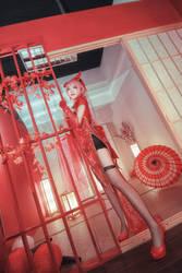 Vocaloid Canary - Megurine Luka by Xeno-Photography