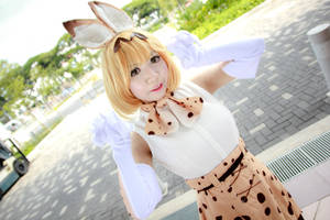 Kemono Friends - Serval by Xeno-Photography