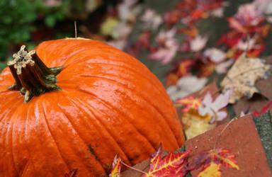 Big Pumpkin by RikyM