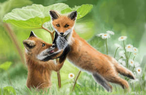 Realism- Foxes by Zehful