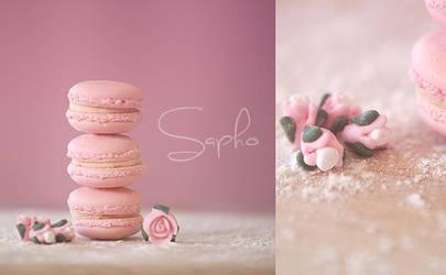 macaroons :3 by SaphoPhotographics