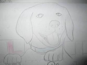 doggy by T-art-freak
