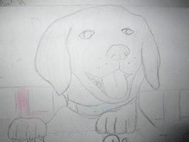 Doggy By 97rg75-d6tu076 by T-art-freak