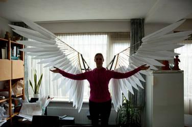 Wings V2 WIP by Mashayahana