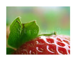 Strawberry Leaves by Straynj3